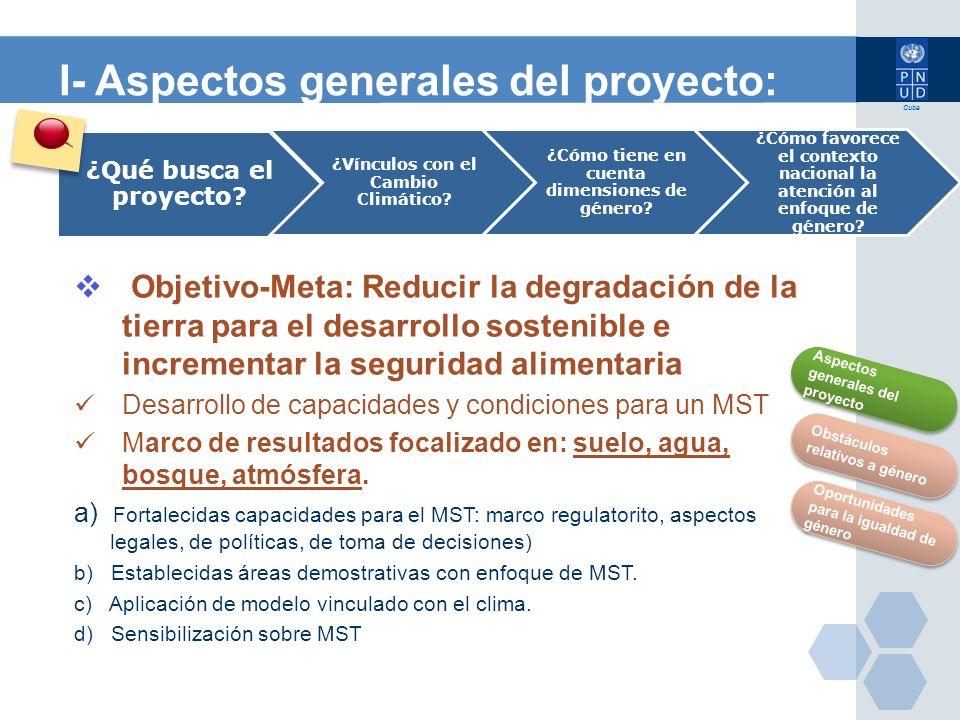 I- Aspectos generales del proyecto: