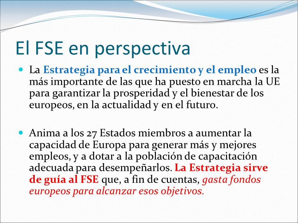 El FSE en perspectiva