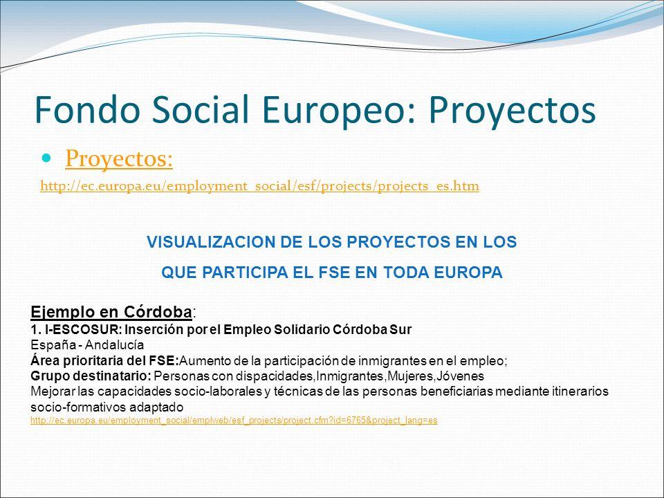 Fondo Social Europeo: Proyectos