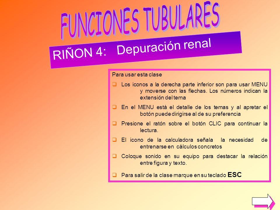 RIÑON 4: Depuración renal