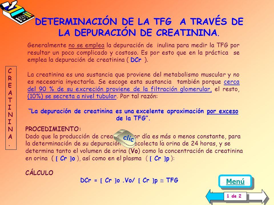 DETERMINACIÓN DE LA TFG A TRAVÉS DE LA DEPURACIÓN DE CREATININA.