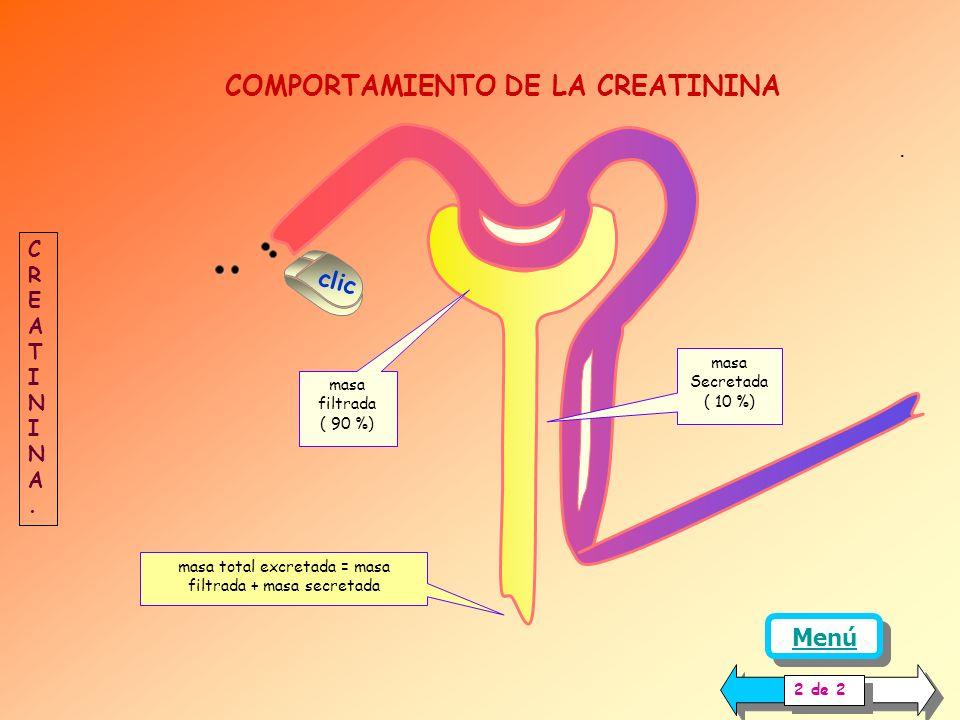 COMPORTAMIENTO DE LA CREATININA