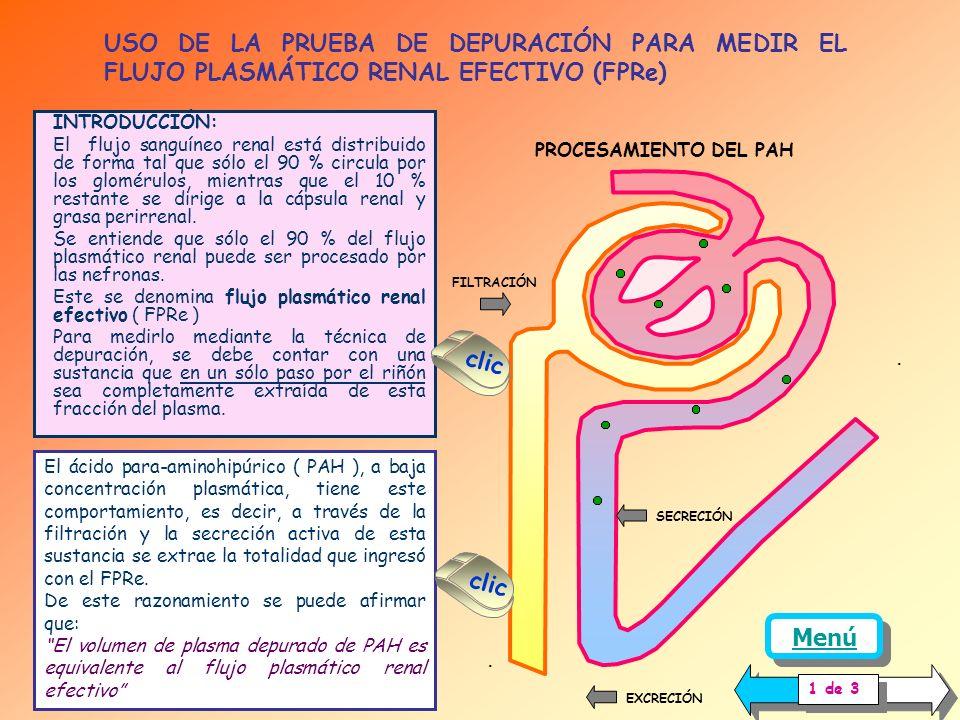 USO DE LA PRUEBA DE DEPURACIÓN PARA MEDIR EL FLUJO PLASMÁTICO RENAL EFECTIVO (FPRe)