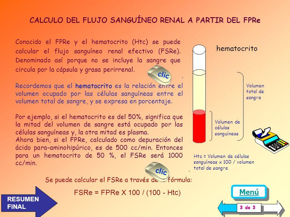 CALCULO DEL FLUJO SANGUÍNEO RENAL A PARTIR DEL FPRe