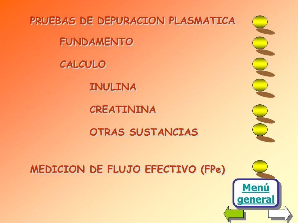 PRUEBAS DE DEPURACION PLASMATICA