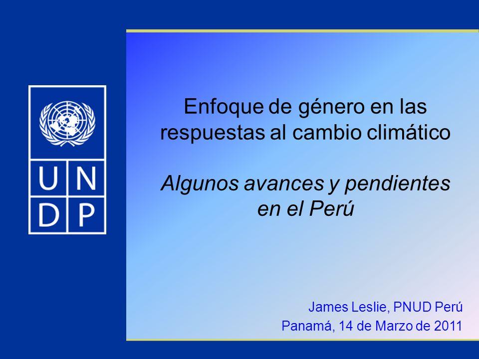 James Leslie, PNUD Perú Panamá, 14 de Marzo de 2011