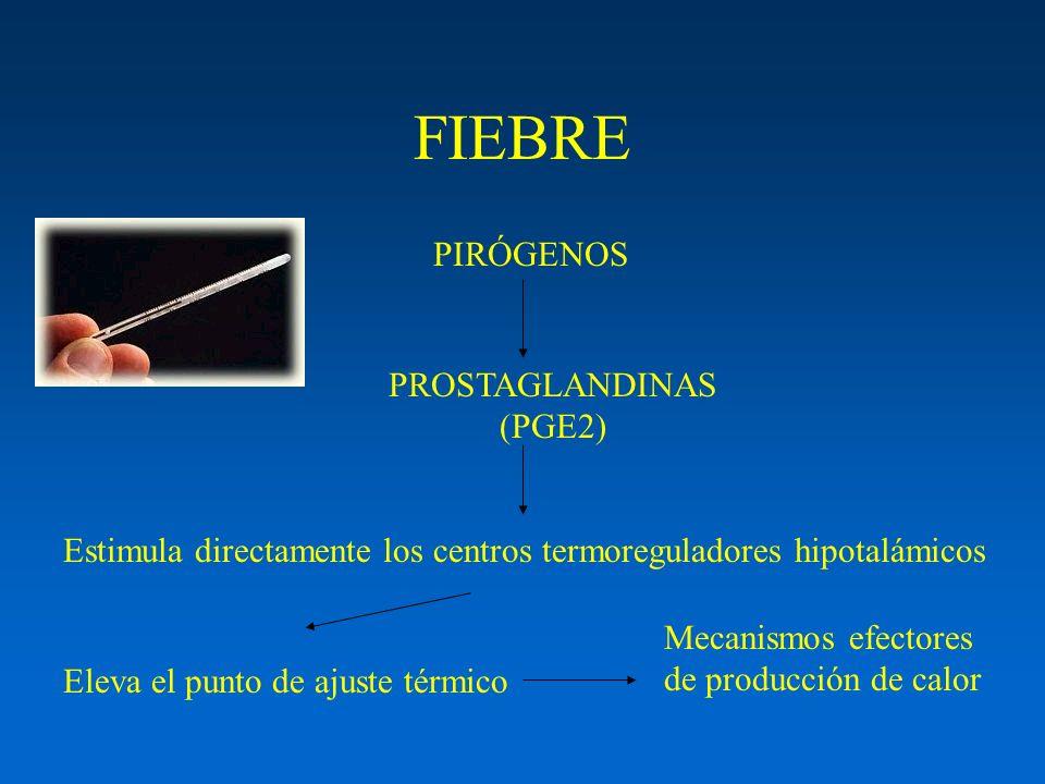 PROSTAGLANDINAS (PGE2)