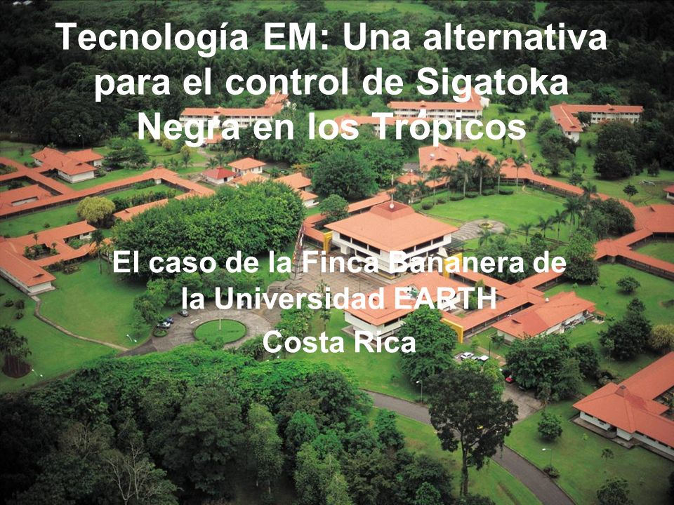 El caso de la Finca Bananera de la Universidad EARTH Costa Rica