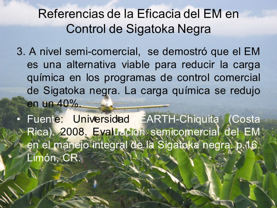 Referencias de la Eficacia del EM en Control de Sigatoka Negra