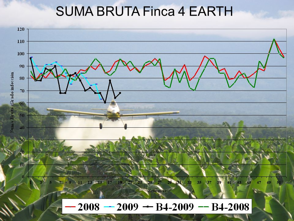 SUMA BRUTA Finca 4 EARTH