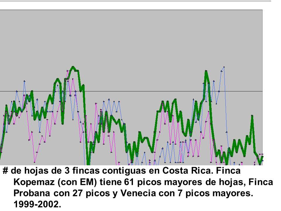 # de hojas de 3 fincas contiguas en Costa Rica