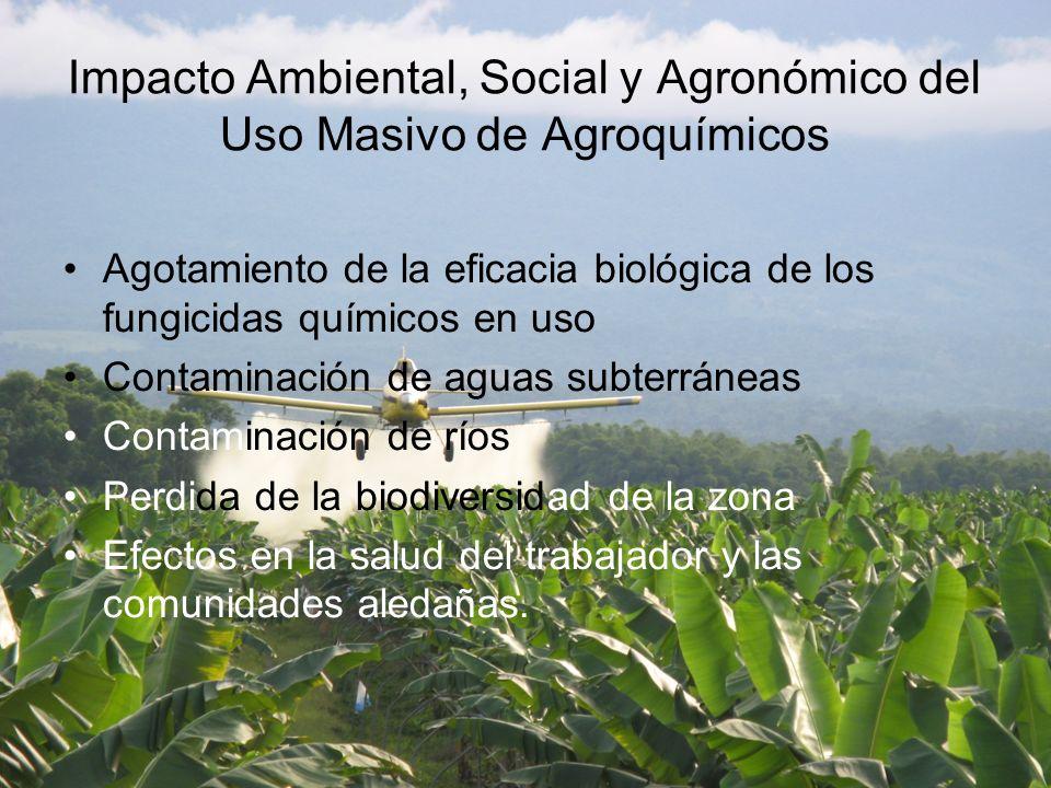 Impacto Ambiental, Social y Agronómico del Uso Masivo de Agroquímicos
