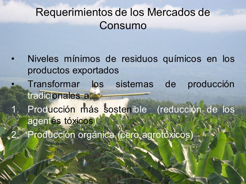 Requerimientos de los Mercados de Consumo