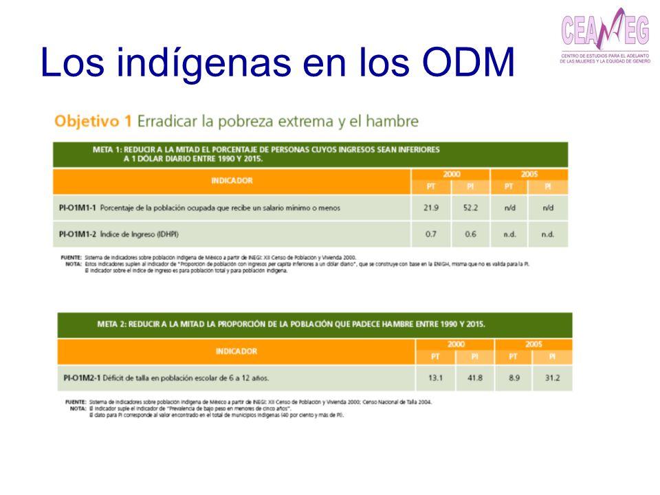 Los indígenas en los ODM