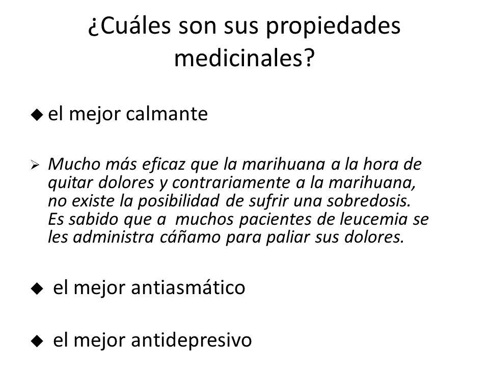 ¿Cuáles son sus propiedades medicinales