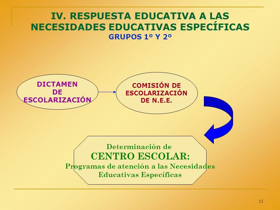 Programas de atención a las Necesidades Educativas Específicas