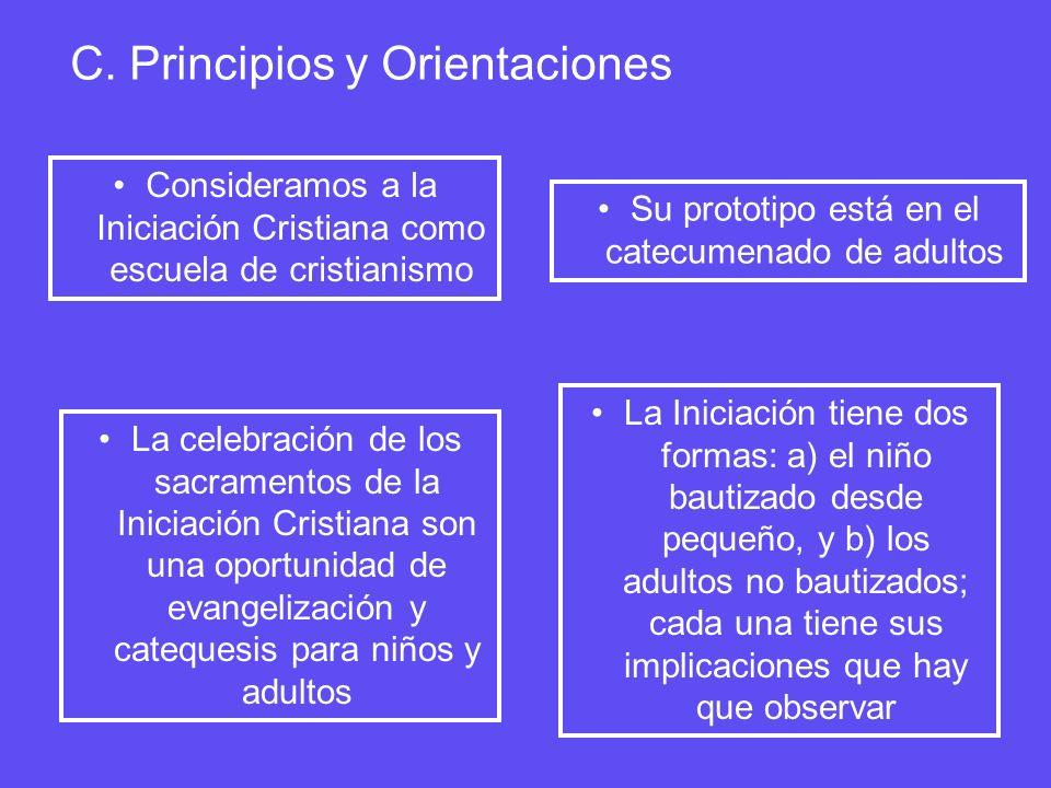 C. Principios y Orientaciones