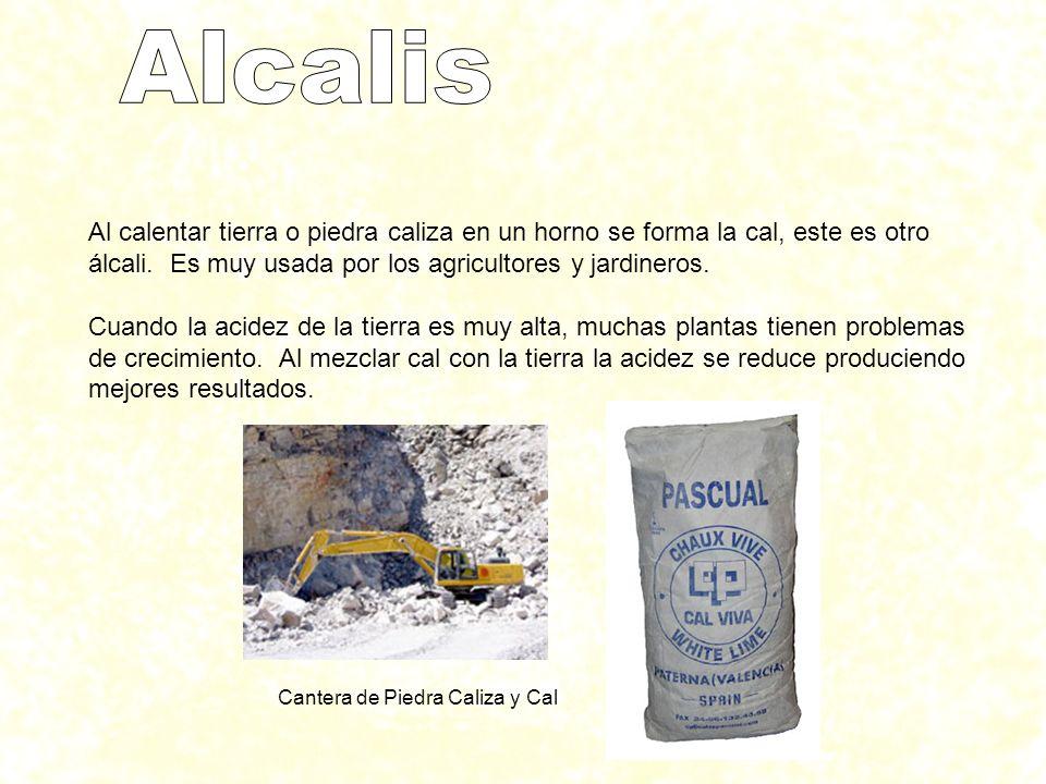 Alcalis Al calentar tierra o piedra caliza en un horno se forma la cal, este es otro álcali. Es muy usada por los agricultores y jardineros.