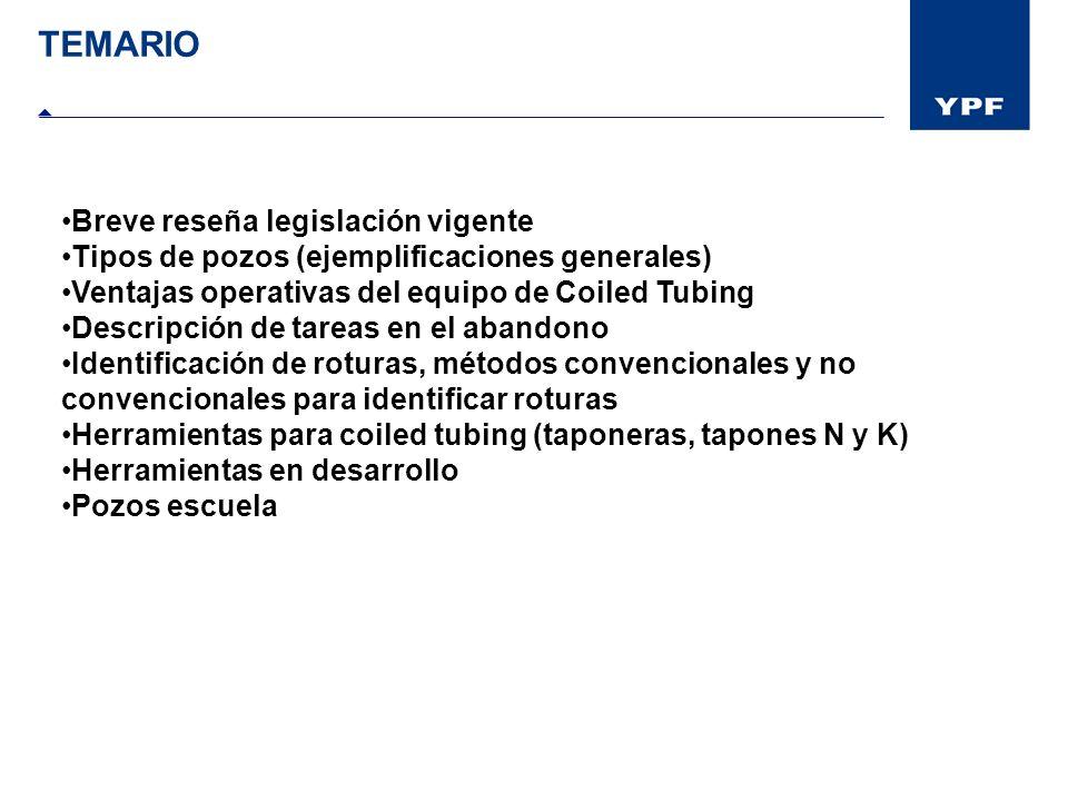 TEMARIO Breve reseña legislación vigente
