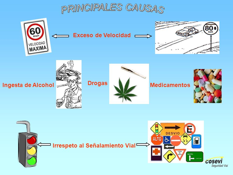 PRINCIPALES CAUSAS Exceso de Velocidad. Drogas. Ingesta de Alcohol.