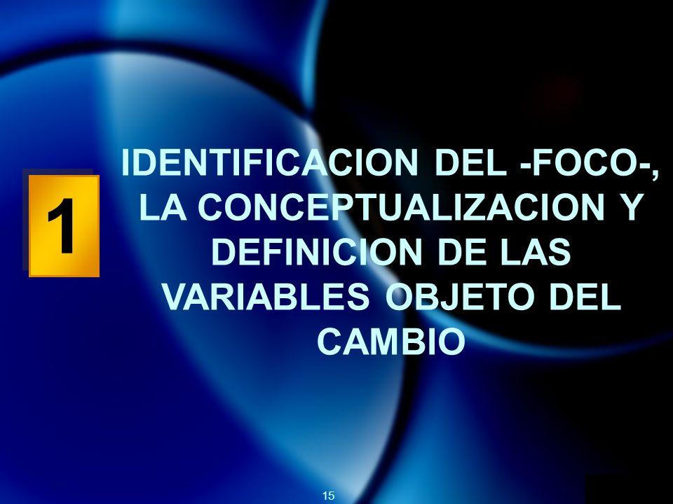 IDENTIFICACION DEL -FOCO-, LA CONCEPTUALIZACION Y DEFINICION DE LAS VARIABLES OBJETO DEL CAMBIO