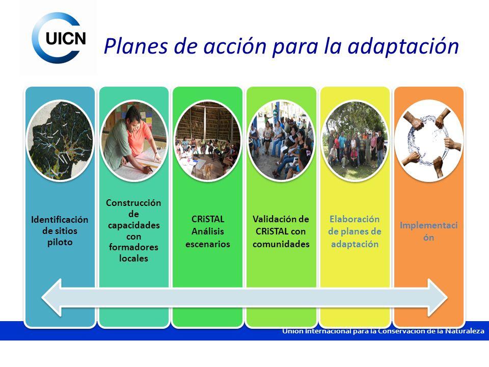 Planes de acción para la adaptación