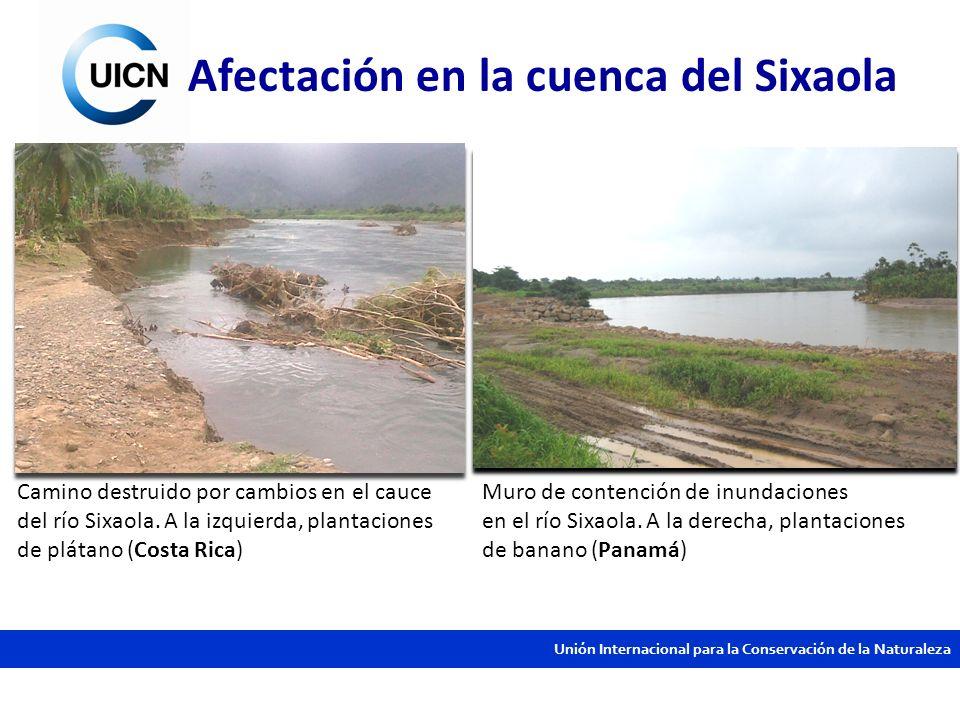 Afectación en la cuenca del Sixaola