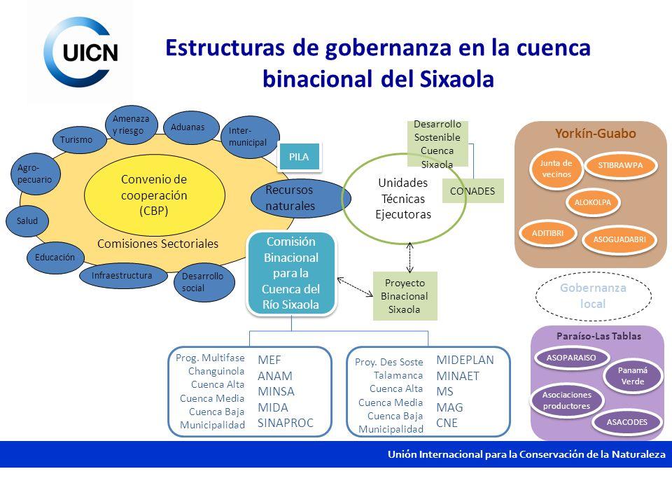 Estructuras de gobernanza en la cuenca binacional del Sixaola