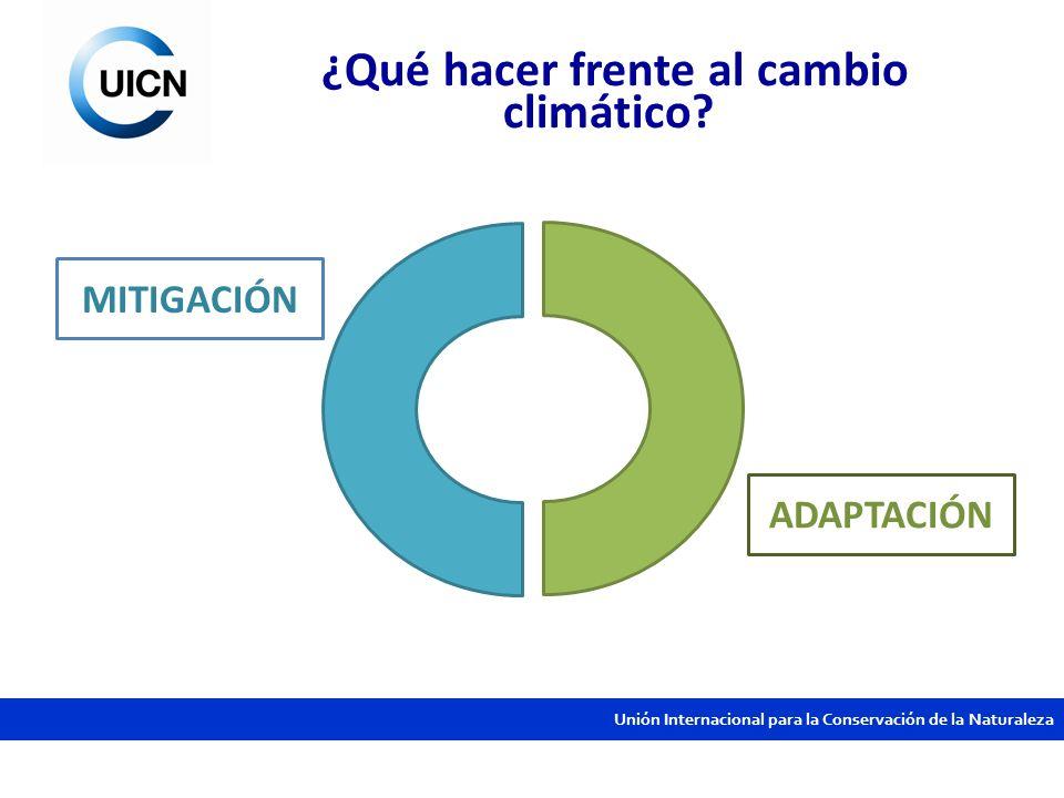 ¿Qué hacer frente al cambio climático