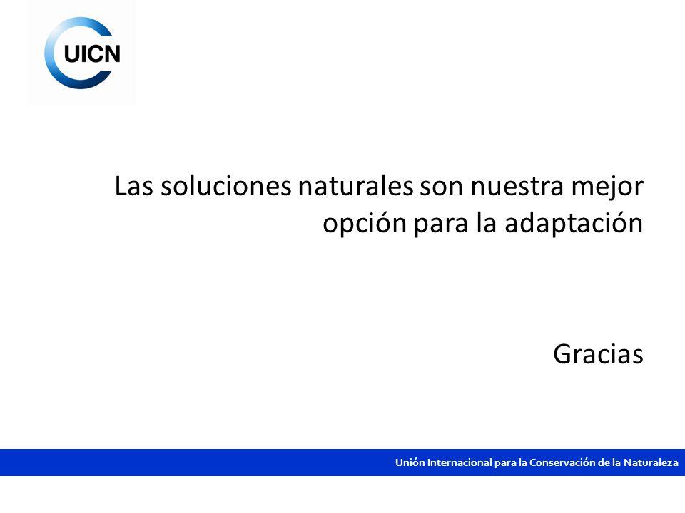 Las soluciones naturales son nuestra mejor opción para la adaptación Gracias