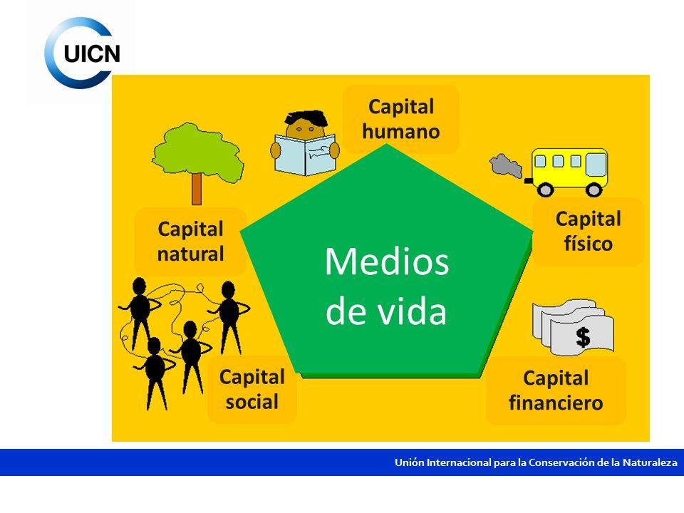 Medios de vida Capital humano Capital físico Capital natural