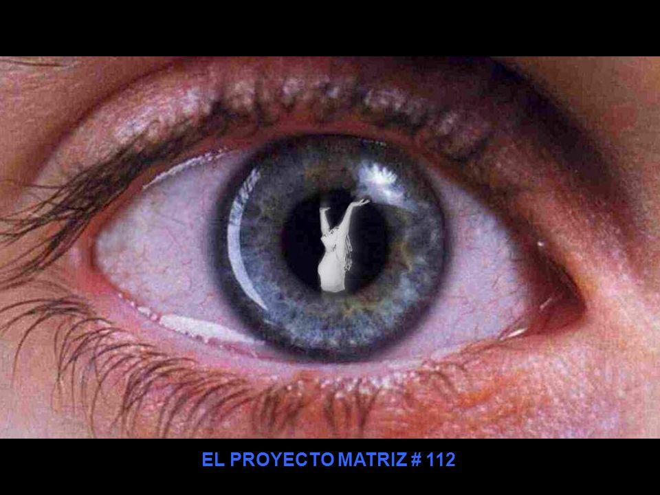 EL PROYECTO MATRIZ # 112