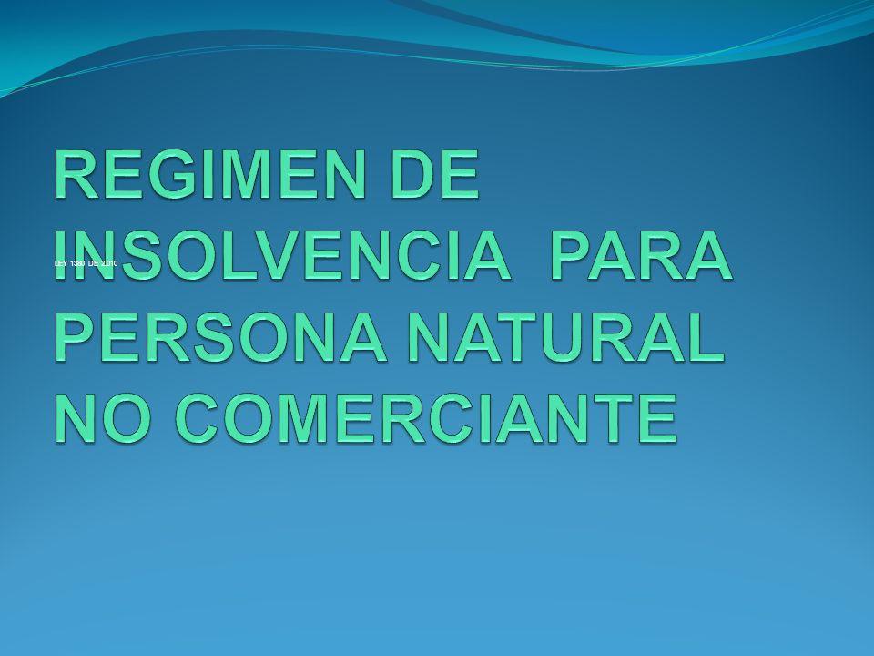 REGIMEN DE INSOLVENCIA PARA PERSONA NATURAL NO COMERCIANTE