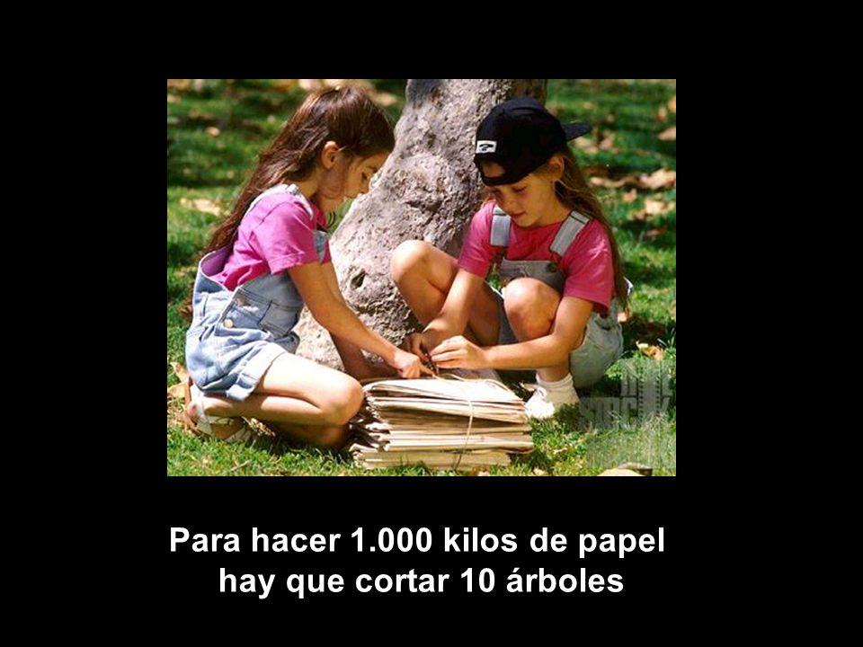 Para hacer 1.000 kilos de papel