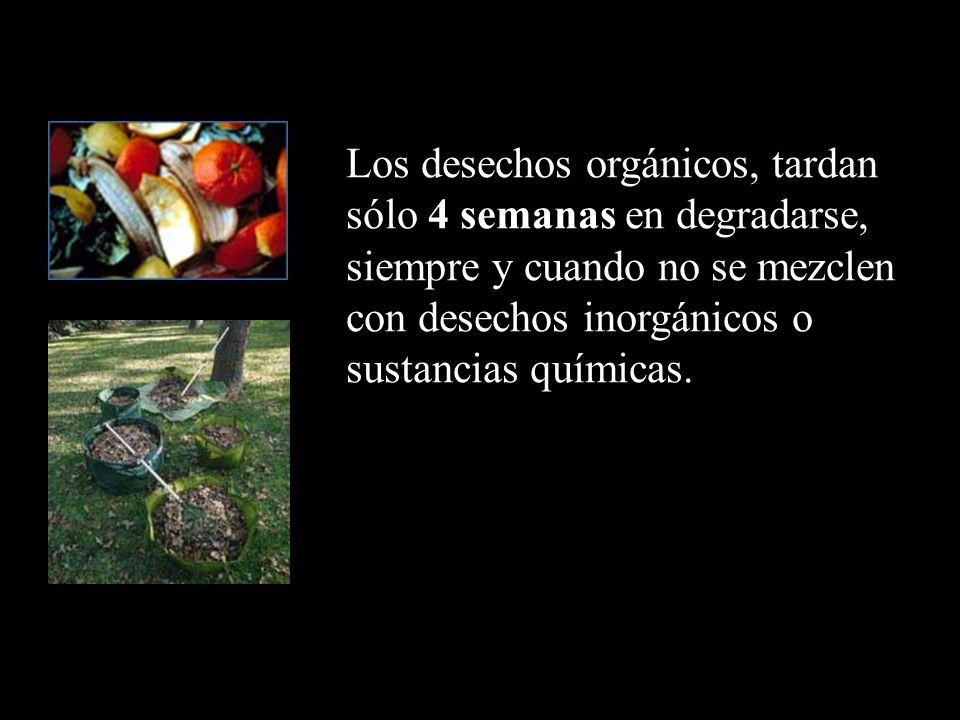 Los desechos orgánicos, tardan