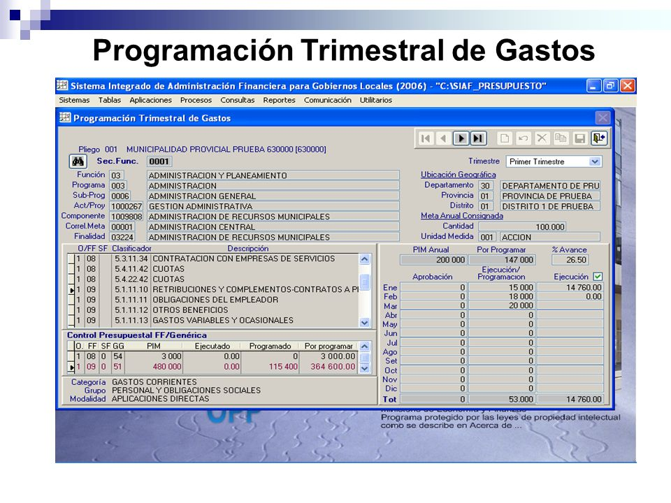 Programación Trimestral de Gastos