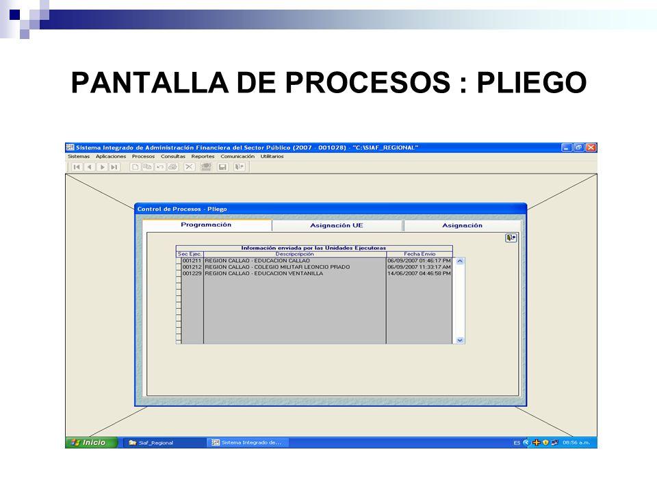 PANTALLA DE PROCESOS : PLIEGO