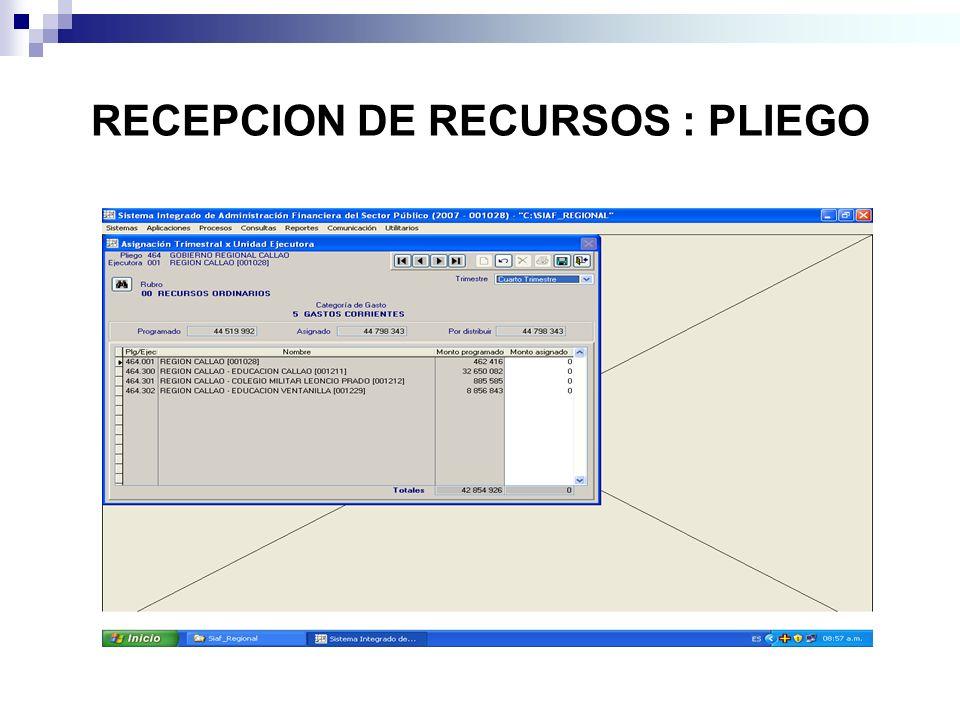 RECEPCION DE RECURSOS : PLIEGO