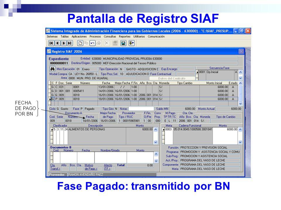 Pantalla de Registro SIAF