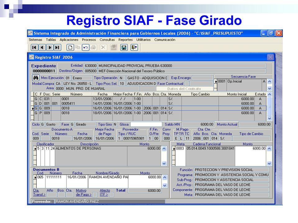 Registro SIAF - Fase Girado