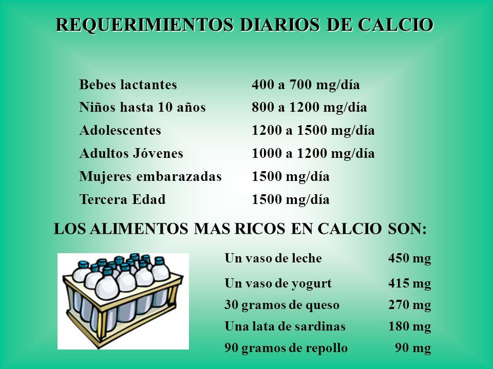 REQUERIMIENTOS DIARIOS DE CALCIO