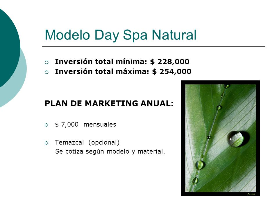 Modelo Day Spa Natural PLAN DE MARKETING ANUAL:
