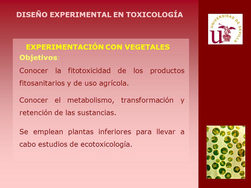 DISEÑO EXPERIMENTAL EN TOXICOLOGÍA EXPERIMENTACIÓN CON VEGETALES
