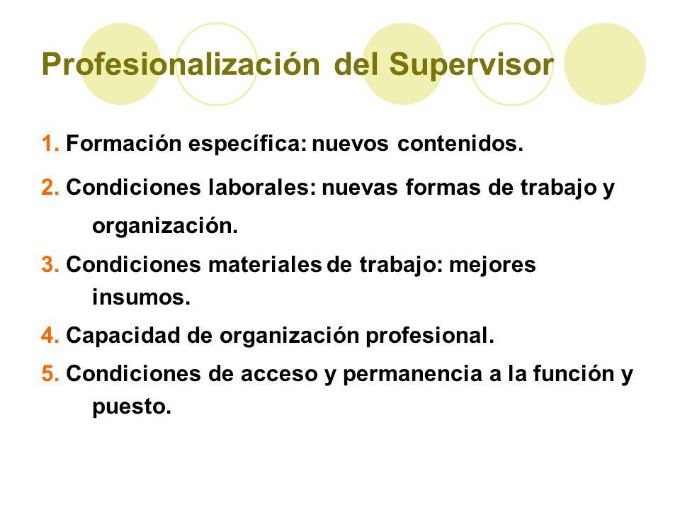 Profesionalización del Supervisor