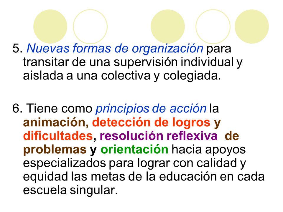 5. Nuevas formas de organización para transitar de una supervisión individual y aislada a una colectiva y colegiada.