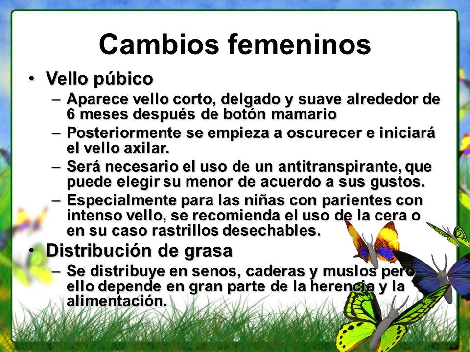 Cambios femeninos Vello púbico Distribución de grasa