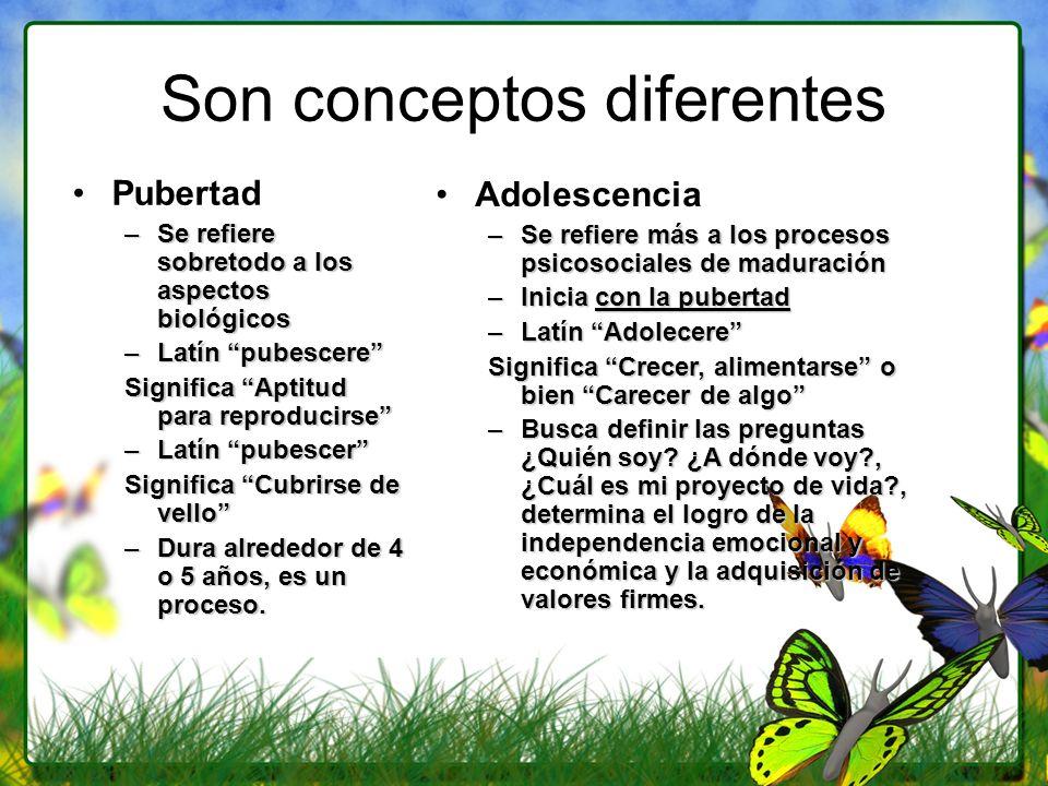 Son conceptos diferentes