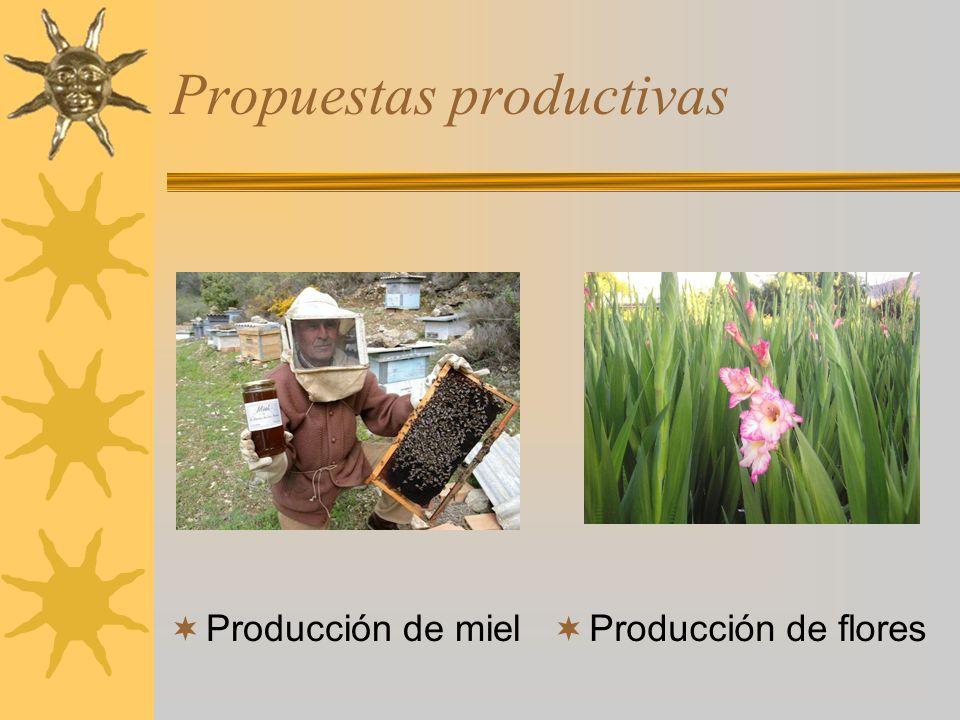 Propuestas productivas