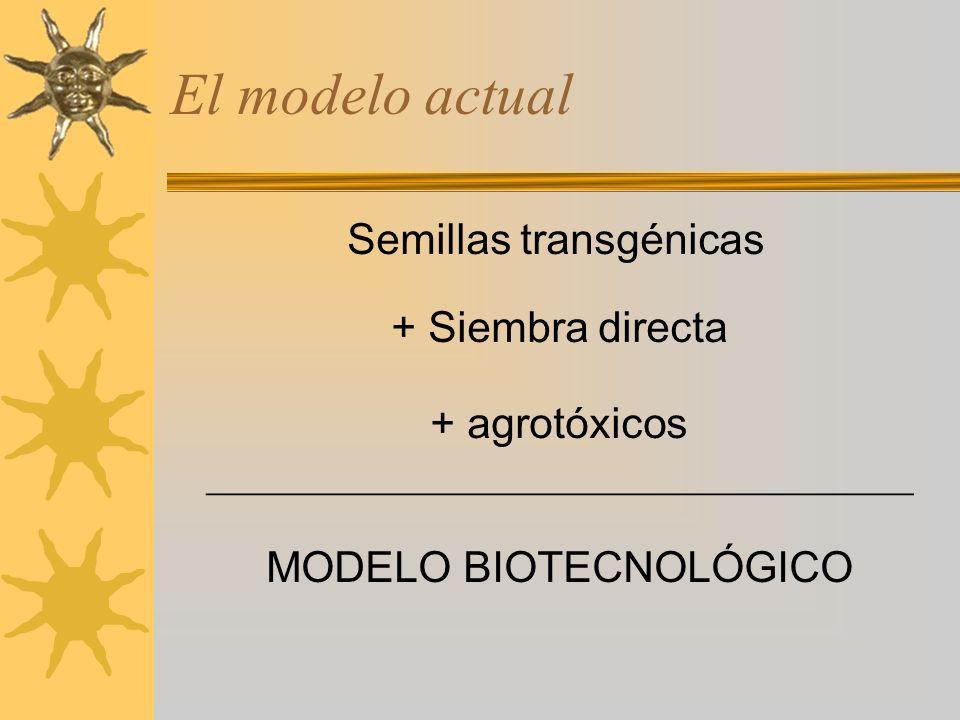 El modelo actual Semillas transgénicas + Siembra directa + agrotóxicos