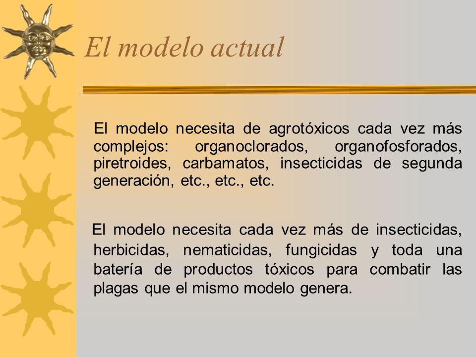 El modelo actual